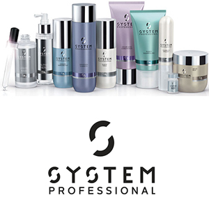 system-professional